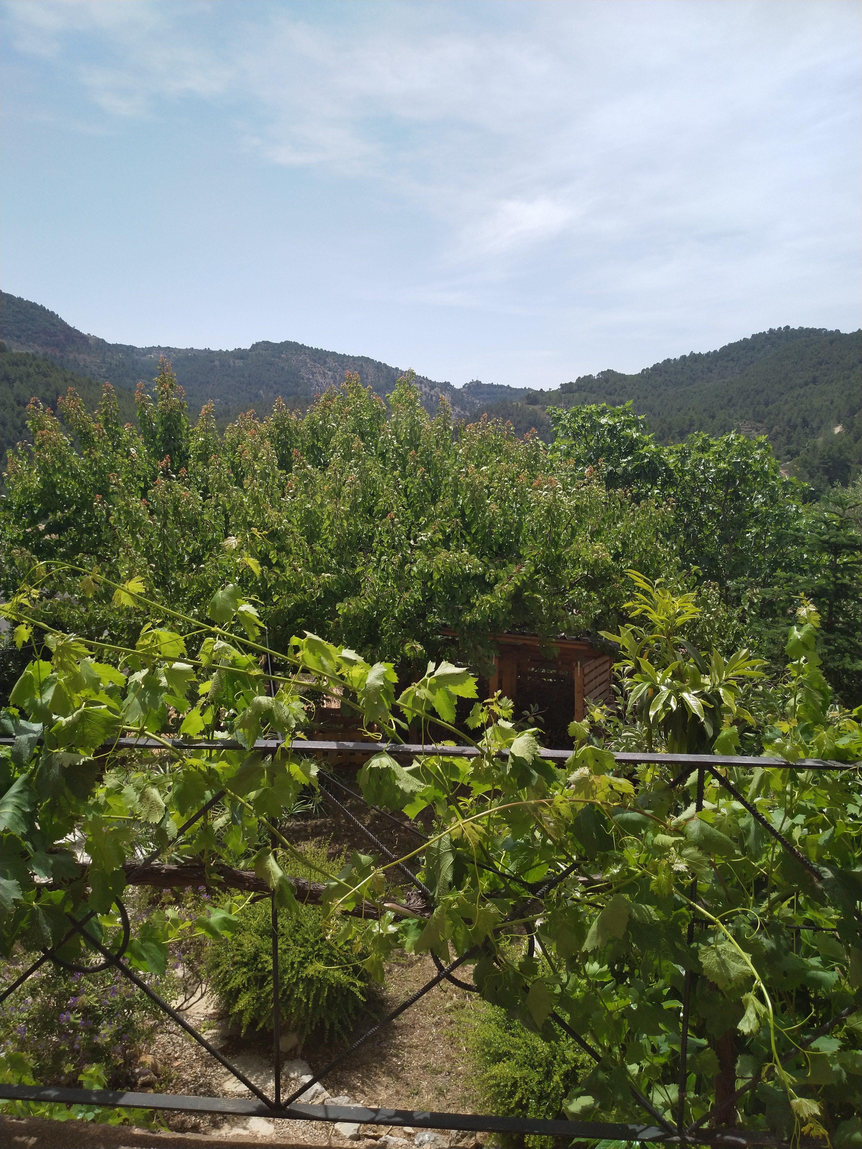 pueblo vacacional castellon